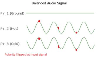 Polarity noise input flip